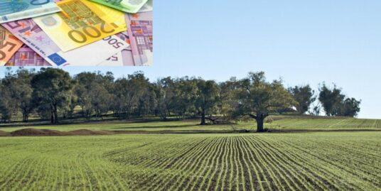 investimento-terreni-agricoli-vicenza